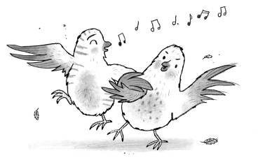 Happy Birds Illustration